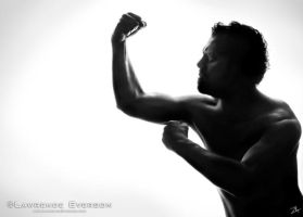 Silhouettes - the Fighter by Leverson
