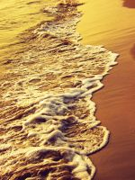 Golden Beach by TheBroth3R
