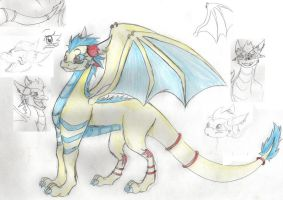 dragon sketch by katze-des-grauens