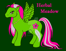 Herbal Meadow by StonerKitty