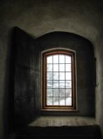 Castle Window by Pajunen