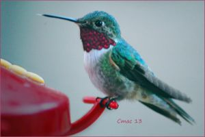 blue hummer by Cmac13