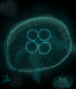 Jellyfish (Day 238) by Hedwigs-art