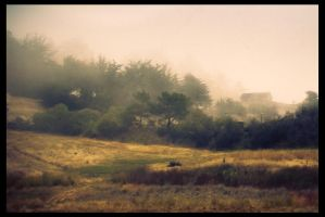Cottage in the Fog by KeepWaiting