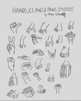 Jimmy Gibson's Hands Paws Claws Studies by CelmationPrince