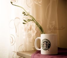 Beautiful morning by Alessia-Izzo