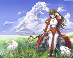 Lunatic fields by Krokobyaka