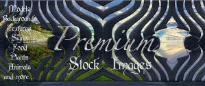 banner 13 for premium stock by StarsColdNight