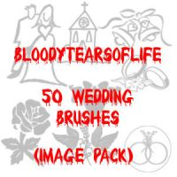 50 Wedding Brushes Image Pack by BloodyTearsOfLife