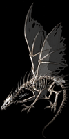 Skeletal Dragon by Timelady-Saxon