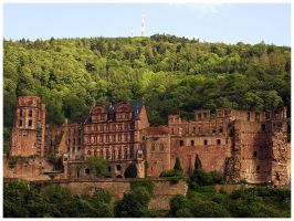 Heidelberg: Castle Ruins by Fox82
