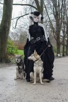 Stock - Baroque Lady with dogs  gothic romantic by S-T-A-R-gazer