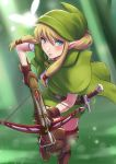 Hyrule Warriors - The missing Linkle by polarityplus