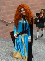 Merida (Brave) - Cos-Mo 2014 by Groucho91