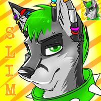 Slim Icon by bingles