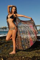 Annali - bikini and cape 3 by wildplaces