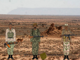 Ogaden War 1977-8-terrain and camo used trial by Adyb234