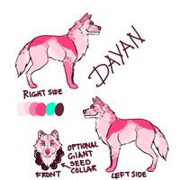 Dayan reference by mariomenso