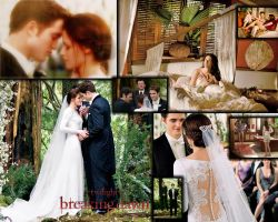 Breaking Dawn part 1 Collage by AvaBloom
