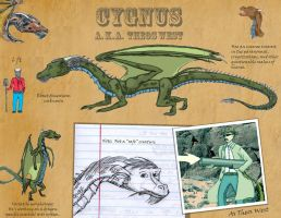 Cygnus - Reference by Draconis-de-Christus