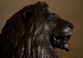 Lion of the Empire by mayec