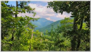 View From Sugarland Mountain Trail 1 by slowdog294