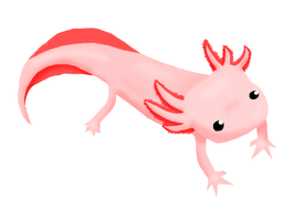 Axolotl by petpet21-7