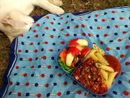 picnic cat by plainordinary1