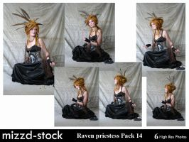 Raven Priestess Pack 14 by mizzd-stock