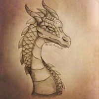 Dragon Sketch by WolfODonnellover