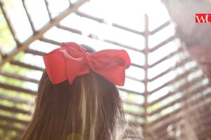 red bow at the los angeles zoo by wilsontang