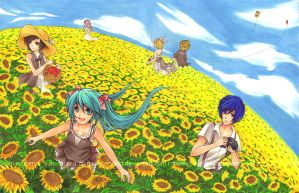 Vocaloid: Sunkissed Summer by rubberyjido