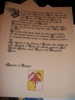Downloadable Kingmaker Charter by WhoDrewThis