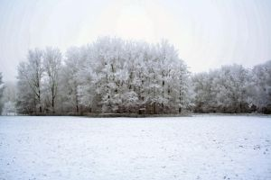 winterland 18 by priesteres-stock