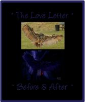 The Love Letter - Before and After by ManifestedSoul