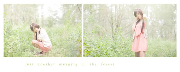just another morning in the forest by roxwindy