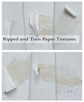 Ripped Dogeared Paper Textures by Mephotos