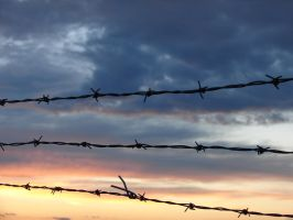 Barbed Wire Sunset Background by FantasyStock