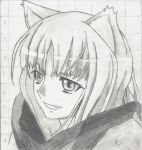 Holo-Spice And Wolf by Daichi168