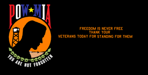veterans day by bagera3005