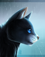 Stand in the Rain ~ Bluestar {+ Speedpaint!} by Moon-DaZzLe