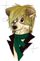 Nico the Collie Mix Poodle .:WIP:. by ScottishRedWolf