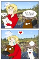 APH - Canada's New Friend by cutepiku