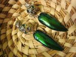 Beetle Wing Earrings by dancingfyre