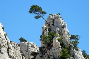 The calanques of Cassis 2 by wildplaces