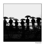 the umbrella cult by Ninye