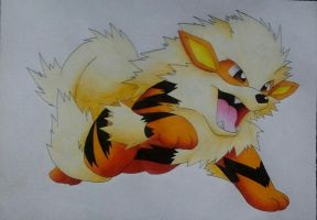 Pokemon - Arkani/Arcanine by Pandaroszeogon