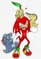 Knux HAtes Pokemon Coloured by Psycho-Slayer