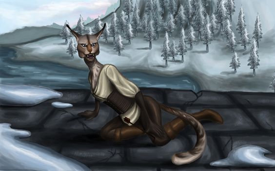 In Windhelm by RiverSTP