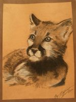 Cougar Cub Portrait by PrincessXena1027